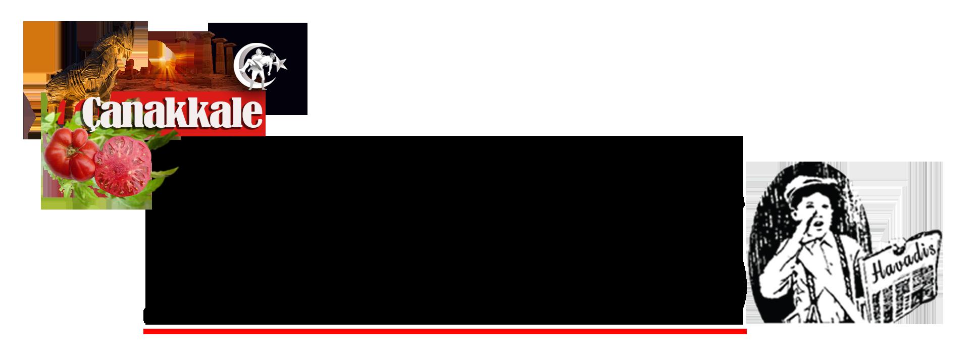 Çanakkale Havadis